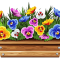 pansy-clipart-violet-flower-16